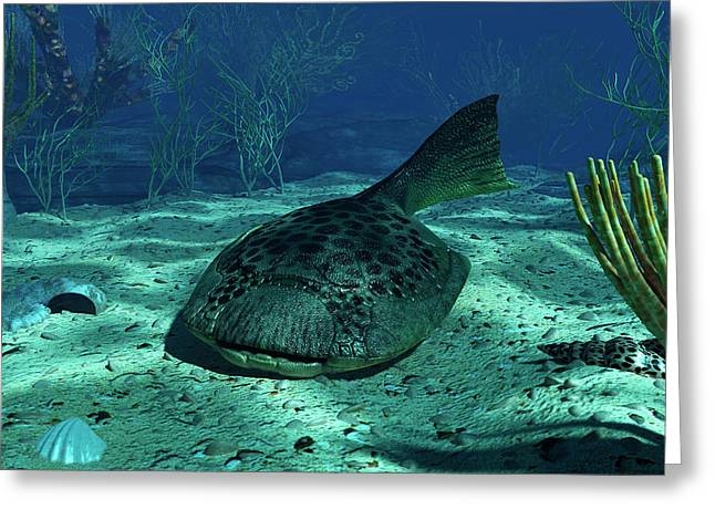A Drepanaspis On The Bottom Greeting Card by Walter Myers