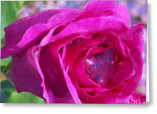 A Drop Of Love  2  Greeting Card
