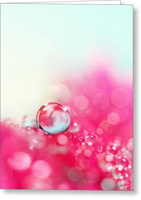 A Drop With Raspberrys And Cream Greeting Card