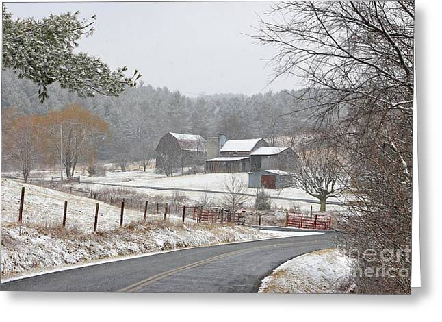 A Dusting Of Snow Greeting Card by Benanne Stiens