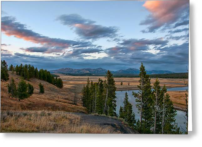 A Fall Evening In Hayden Valley Greeting Card