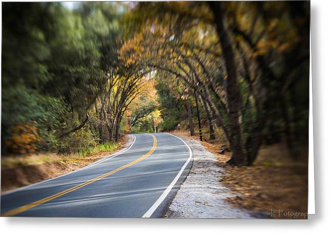 A Fall Roadway Greeting Card