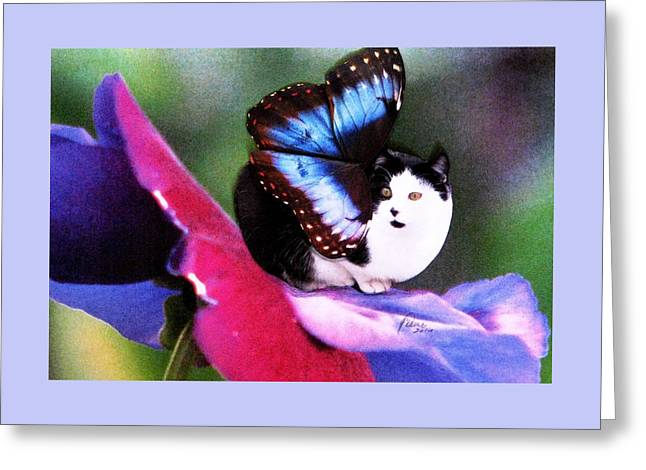 A Feline Fairy In My Garden Greeting Card by Angela Davies
