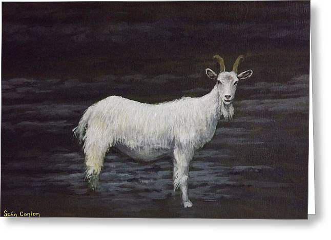 A Feral Goat On The Burren Greeting Card by Sean Conlon