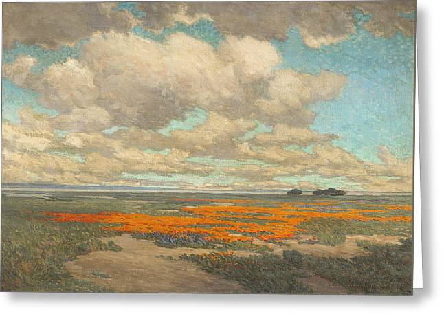 A Field Of California Poppies Greeting Card by Granville Redmond