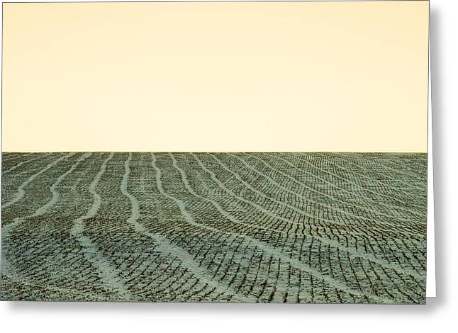 A Field Stitched Greeting Card by Todd Klassy