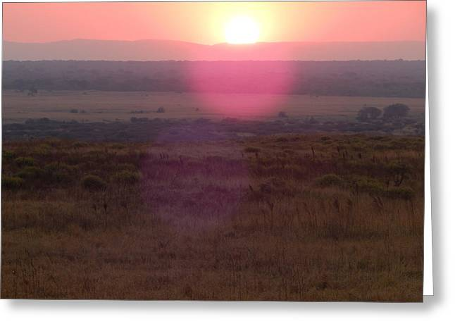 A Flare From South Africa Greeting Card by Patrick Murphy