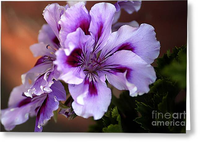 A Floral For Jalapeno Greeting Card by Clayton Bruster