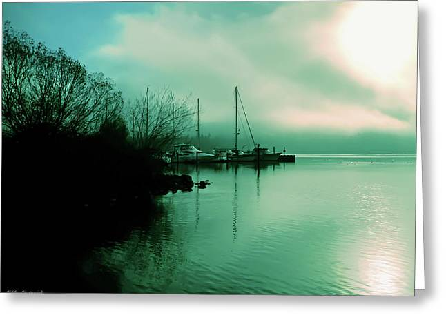 A Foggy Day At Log Boom Park On Lake Washington Greeting Card