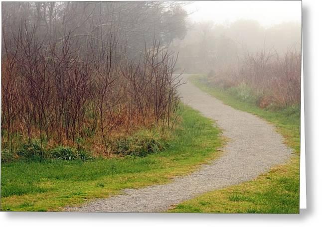 A Foggy Path Greeting Card
