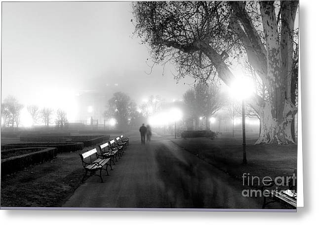 A Foggy Walk In Vienna Greeting Card by John Rizzuto