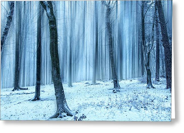 A Forest In Winter Greeting Card