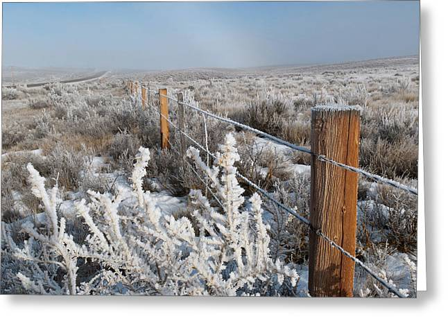 A Frosty And Foggy Morning On The Way To Steamboat Springs Greeting Card