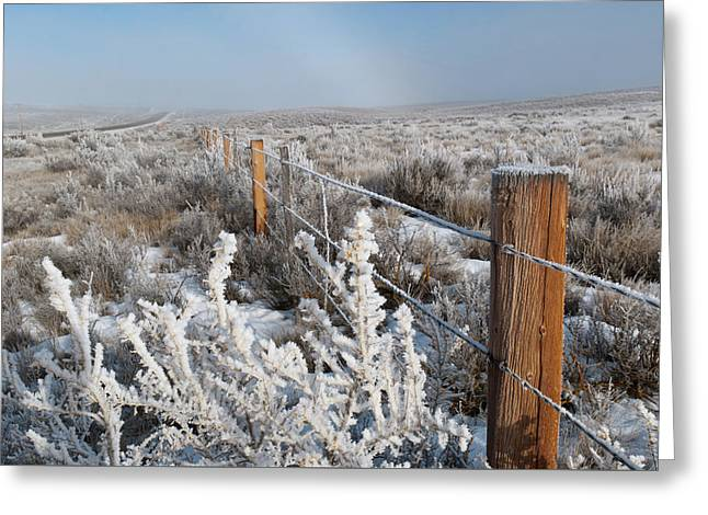 Greeting Card featuring the photograph A Frosty And Foggy Morning On The Way To Steamboat Springs by Cascade Colors