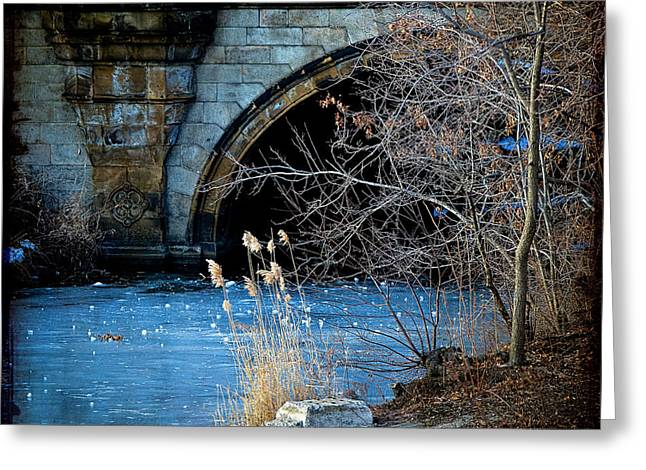 A Frozen Corner In Central Park Greeting Card