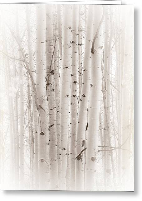 Greeting Card featuring the photograph A Gathering by The Forests Edge Photography - Diane Sandoval