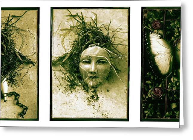 A Graft In Winter Triptych Greeting Card