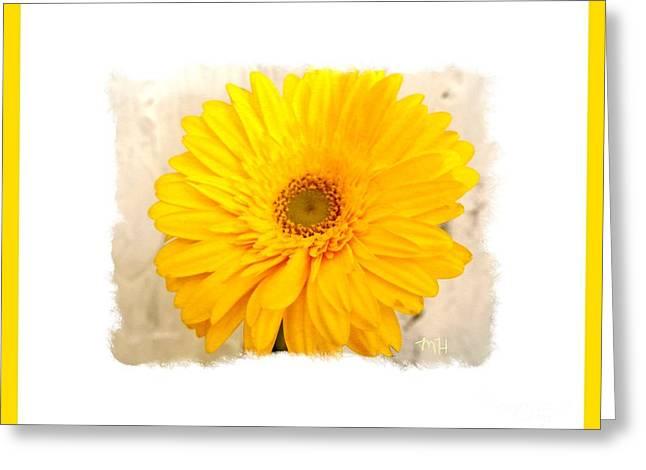 A Grand Yellow Gerber Greeting Card by Marsha Heiken