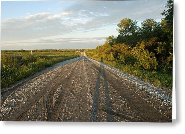 A Gravel Road Leads Away From A Farm Greeting Card by Joel Sartore