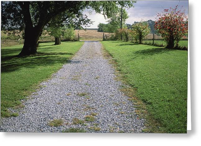 A Gravel Road Marks The Entranceexit Greeting Card by Joel Sartore