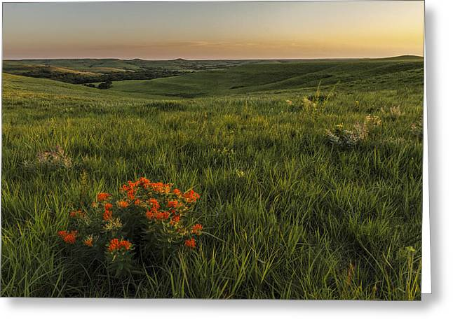 A Great View Of The Flint Hills Greeting Card