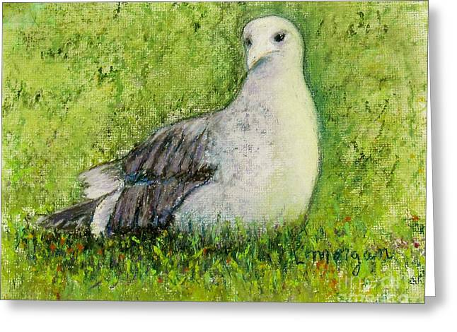 A Gull On The Grass Greeting Card