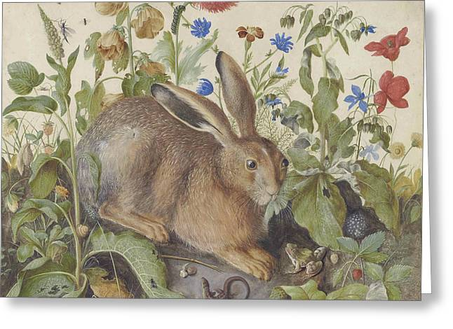 A Hare Among Plants Greeting Card by Hans Hoffman