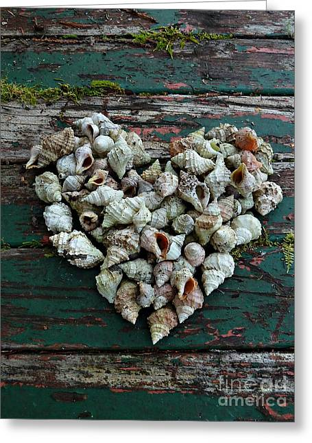 A Heart Made Of Shells Greeting Card
