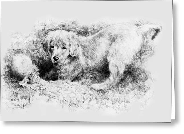 Toy Dog Drawings Greeting Cards - A Hiding Place Greeting Card by Rachel Christine Nowicki