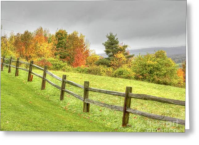 A Highland Forest Autumn Greeting Card