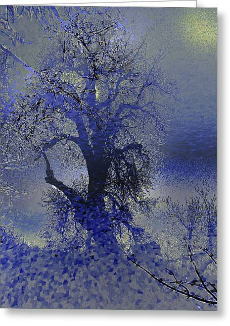 Greeting Card featuring the photograph A Hoar Frost Morning by Irma BACKELANT GALLERIES