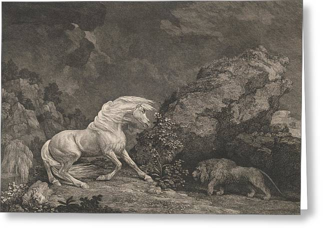A Horse Affrighted By A Lion Greeting Card by George Stubbs