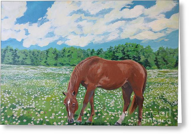 A Horse Named Dante Greeting Card by Stella Sherman
