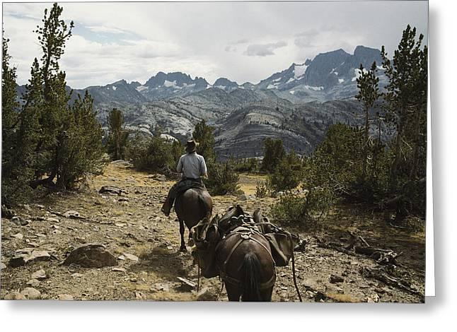 A Horse Packer In A High Mountain Greeting Card by Gordon Wiltsie