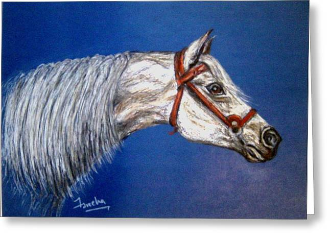 A Horse With No Name Greeting Card by Fareeha Khawaja
