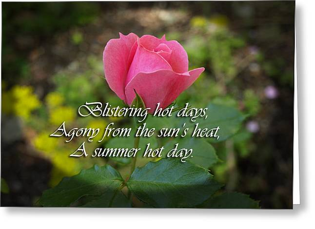 A Hot Summer Day Greeting Card by Elliptical Art