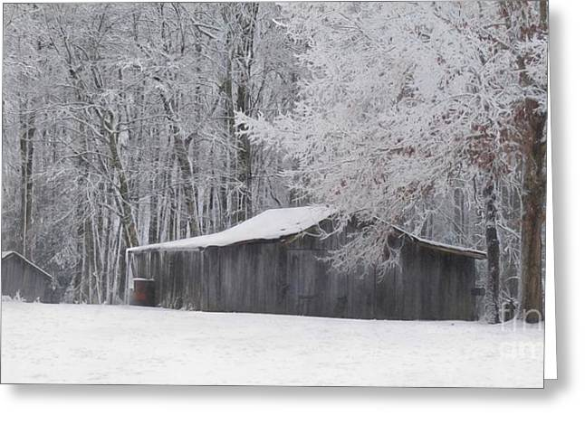 A January Day Greeting Card by Benanne Stiens