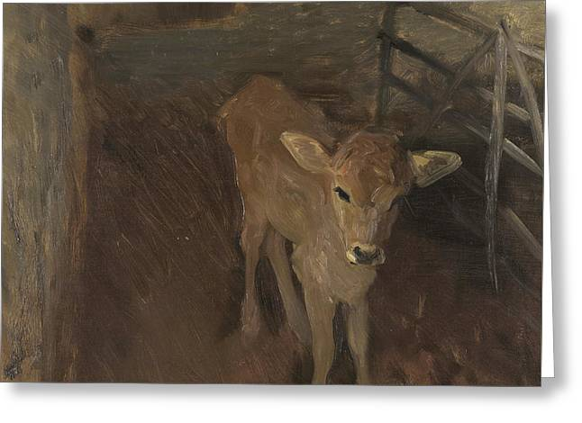 A Jersey Calf, 1893 Greeting Card by John Singer Sargent