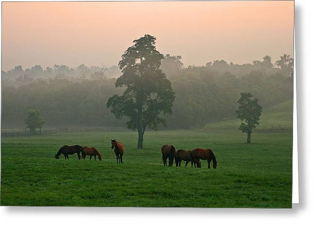 A Kentucky Morning. Greeting Card