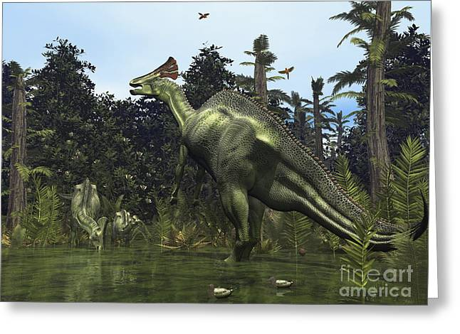 A Lambeosaurus Rears Onto Its Hind Legs Greeting Card