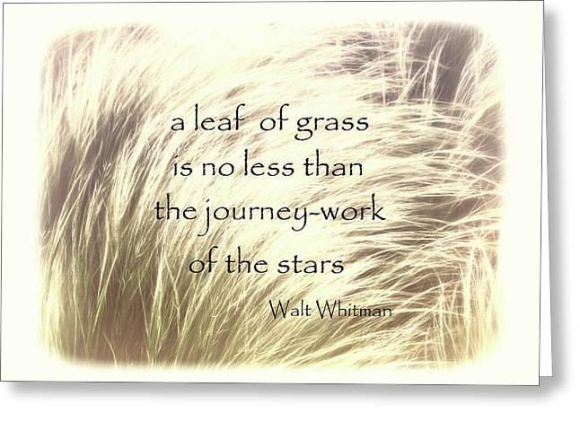A Leaf Of Grass Walt Whitman Quote Greeting Card by Ann Powell