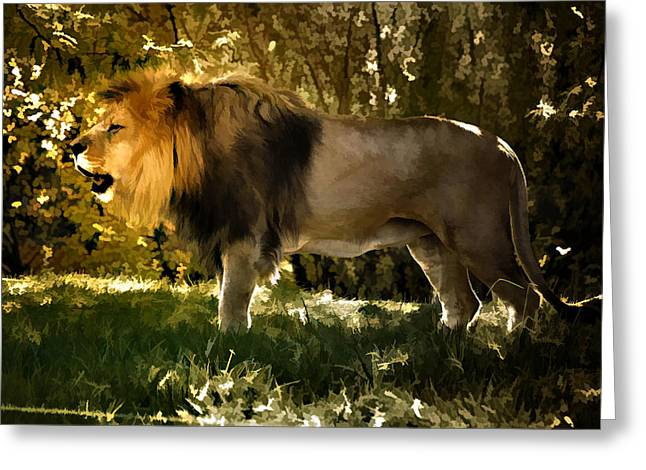 Greeting Card featuring the photograph A Lion King by Elaine Manley