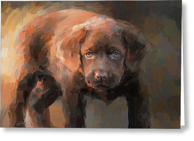 A Little Bit Of Chocolate Lab Greeting Card by Jai Johnson