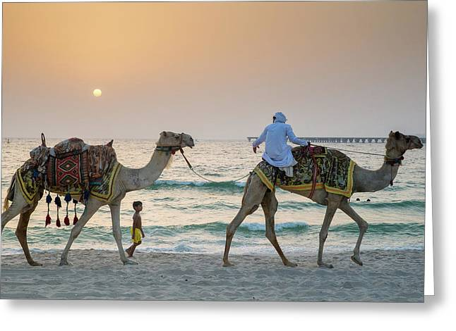 A Little Boy Stares In Amazement At A Camel Riding On Marina Beach In Dubai, United Arab Emirates Greeting Card
