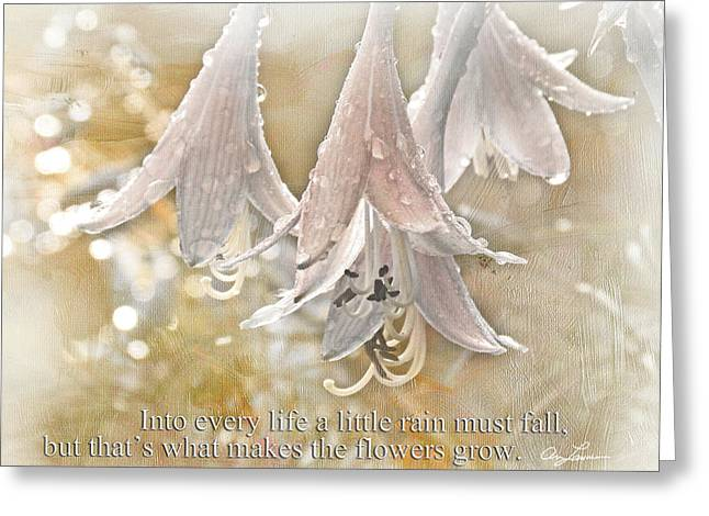 A Little Rain Greeting Card