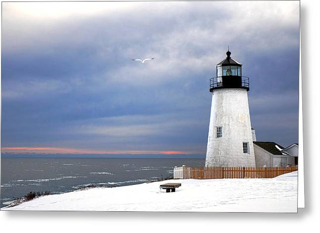A Lonely Seagull Was Flying Over The Pemaquid Point Lighthouse Greeting Card by Olivier Le Queinec
