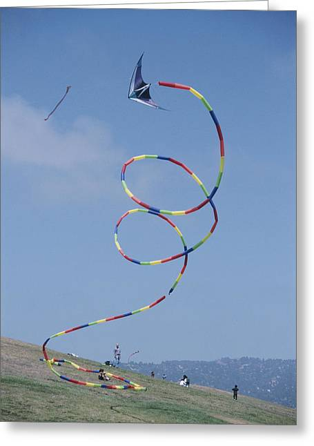 Kites Greeting Cards - A Long-tailed Kite Soars Greeting Card by Stephen Sharnoff