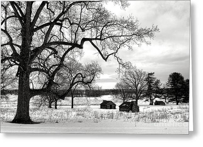 A Long Winter In Valley Forge Greeting Card