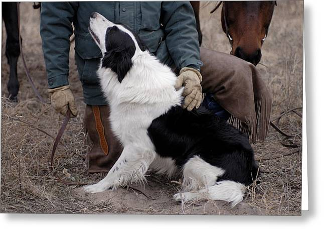 A Male Rancher And His Boarder Collie Greeting Card by Joel Sartore