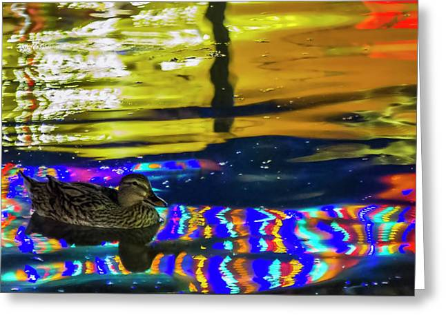 Greeting Card featuring the photograph A Mallard Of Old San Antone by Gary Holmes